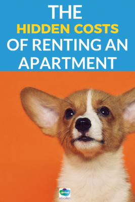 Living on your own is great, but are you financially prepared to rent? Look out for additional expenses you may not anticipate.