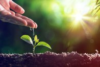 8 Fantastic (and Frugal) Earth Day Ideas
